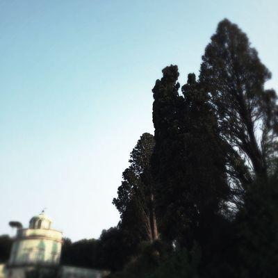 Toscana Firenze Italy Boboli Garden