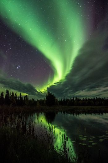 NWT northern lights! Beauty In Nature Lake Reflection Aurora Polaris Scenics Night Star - Space Green Color Sky Nature Dramatic Sky Tranquil Scene Water Tranquility Cold Temperature Awe Landscape Outdoors Astronomy Winter