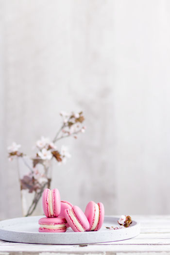 Close-up of pink flower on table against wall