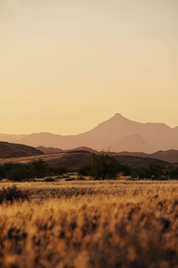 Namibia Savannah Sunset_collection Beauty In Nature Clear Sky Copy Space Environment Field Idyllic Land Landscape Mountain Mountain Range Mountains Nature No People Non-urban Scene Outdoors Plant Scenics - Nature Sky Sunset Tranquil Scene Tranquility Travel Destinations