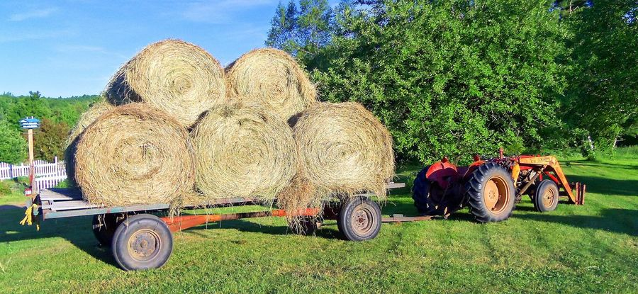 Agricultural Machinery Agriculture Bale  Day Family Farm Farm Farm Farm Life Field Grass Green Color Growth Hay Hay Bale Haystack Land Vehicle No People Outdoors Rural Scene Sky Stack Tractor Transportation Tree