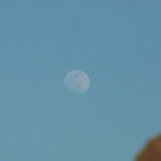Moon Babilon