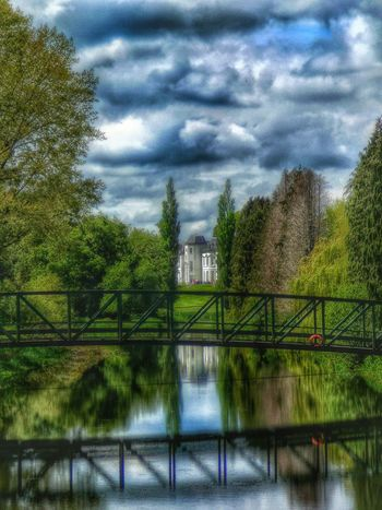 Celbridge Flowers, Nature And Beauty Landscape Growing Better Tree Hugging Water Reflection My Country In A Photo Ireland🍀 Waterscape River View