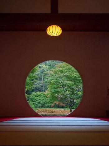 Circle Circular Circular Window Hole Kamakura Meigetsuin No People Window Ultimate Japan