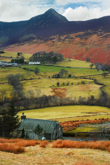Causey Pike Autumn colors Newlands Pass Mountain View Lake District National Park Causey Pike Landscape Nature Scenics Mountain Rural Scene Beauty In Nature Outdoors Agriculture Field No People Multi Colored Mountain Range Day
