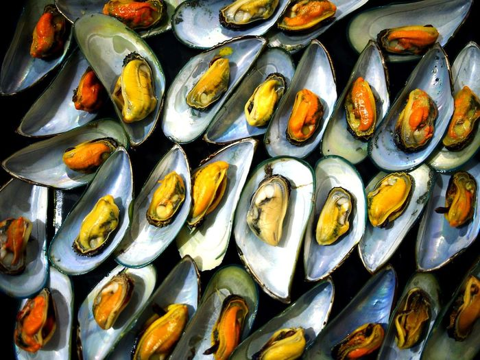 steamed mussel on a plate Food Food And Drink Foodphotography Mussel Shell Food Dish Cuisine Eat Taste Meat Delicious Flavor Cook  Steam Directly Above Backgrounds Food And Drink Mussel Seashell Shell Fish Market Seafood Clam Scallop