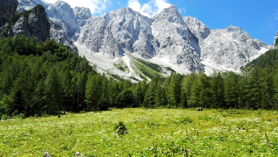Slovenia Slovenija Logarska Dolina Nature Mountains Hiking Beuty Of Nature Beutiful World Enjoying Life View Pictureoftheday