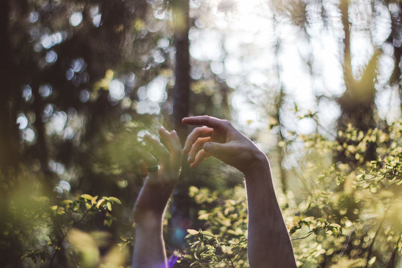Human Hand Plant Tree Hand Real People Lifestyles Human Body Part Day One Person Nature Focus On Foreground Leisure Activity Forest Growth Outdoors Land Sunlight Gesturing Body Part Human Arm Arms Raised Finger Human Limb