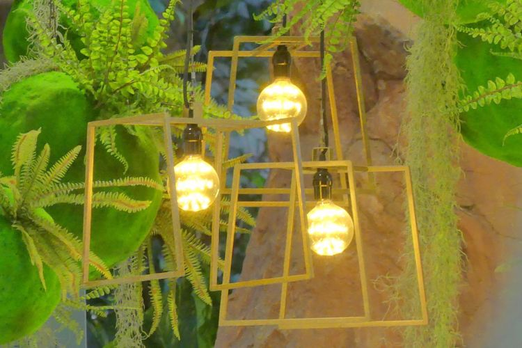 DIY Multiple Light Bulbs Close-up DIY Multiple Light Bulbs Electric Light Electricity  Glowing Green Color Hanging Illuminated Indoors  Light Bulb Light Bulbs Lighting Equipment Lighting Equipment Low Angle View Night No People Technology หลอดไฟ The Secret Spaces