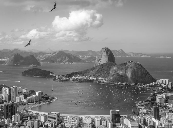 Cityscape And Sugarloaf Mountain By Guanabara Bay