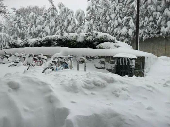 Snowpocalypse Snow Accumulation Bike Rack Snowscape College Campus My Winter Favorites It's Cold Outside