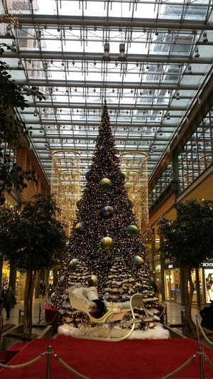 No Filter, No Edit, Just Photography The Purist (no Edit, No Filter) Christmas Decorations La Vie Est Belle ! Christmas Tree Christmas2015 Shoppingmall Potzdamer Platz Femalephotographerofthemonth Christmastime 43 Golden Moments