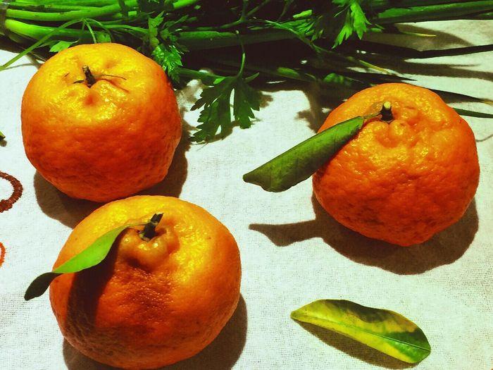 Outono Autumn Tangerine Tangerina мандарин осень Orange Color