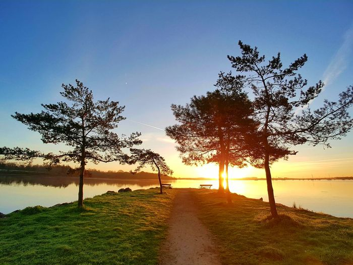 [here comes] the sun France 🇫🇷 Bretagne Bretagnetourisme Conleau Nature Photography Sunshine sunset #sun #clouds #skylovers #sky #nature #beautifulinnature #naturalbeauty photography landscape Tree And Sky
