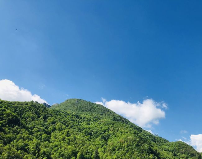 Low angle view of green mountain against sky