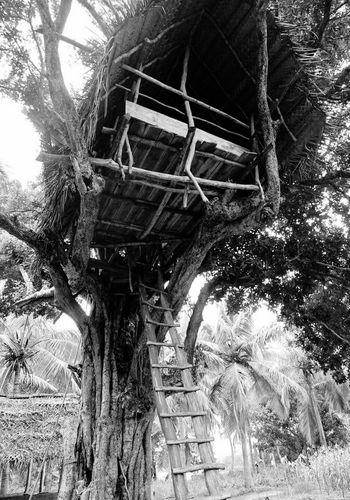 Holiday Holiday2017 Sri Lanka Black & White Samsung Galaxy S7 Sri Lankan Village Treehouse Habarane
