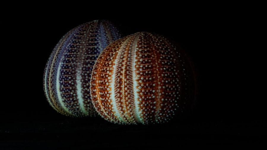Close-up of balls against black background