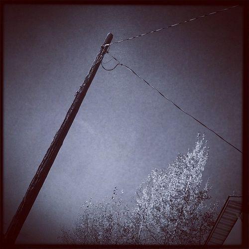 Pole Canada Alberta Alistairhenning Albertaart canada streetphotography urban urbanart instagram power poles