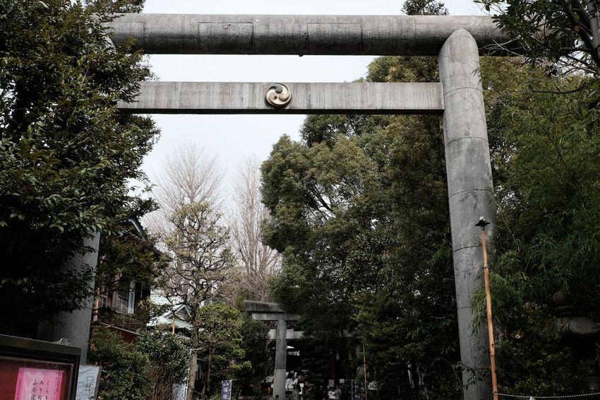 亀戸の天祖神社 Fujifilm Fujifilm X-E2 Fujifilm_xseries Japan Japan Photography Japanese Culture Religion Shrine Tokyo XF18-55mm 亀戸 亀戸天祖神社 天祖神社 手水舎 東京 神社 鳥居