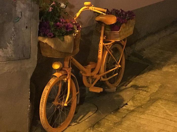Colour Of Life Bike Orange Orange Color Orange Bike Flowers Italy