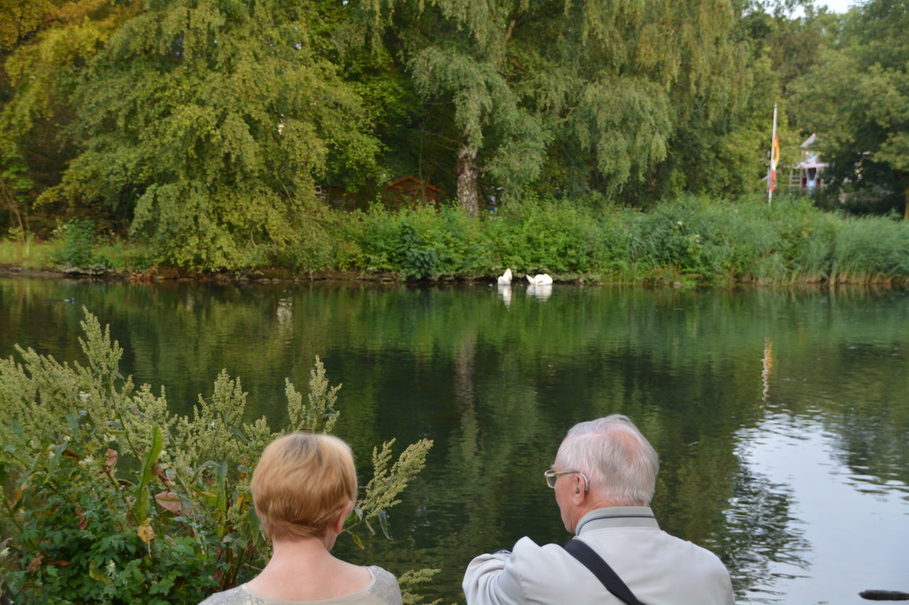 rear view, two people, togetherness, senior adult, senior men, lake, headshot, water, nature, tree, real people, day, outdoors, men, leisure activity, plant, childhood, bonding, beauty in nature, adult, mammal, swan, people, adults only