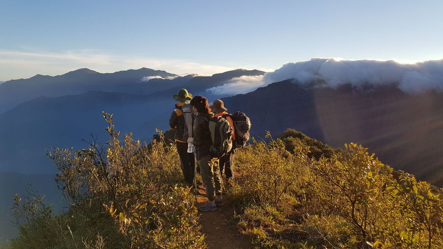 High Angle View Of Friends Hiking On Mountain