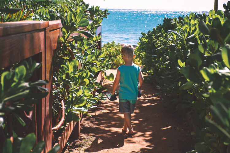 Walk Beach Path
