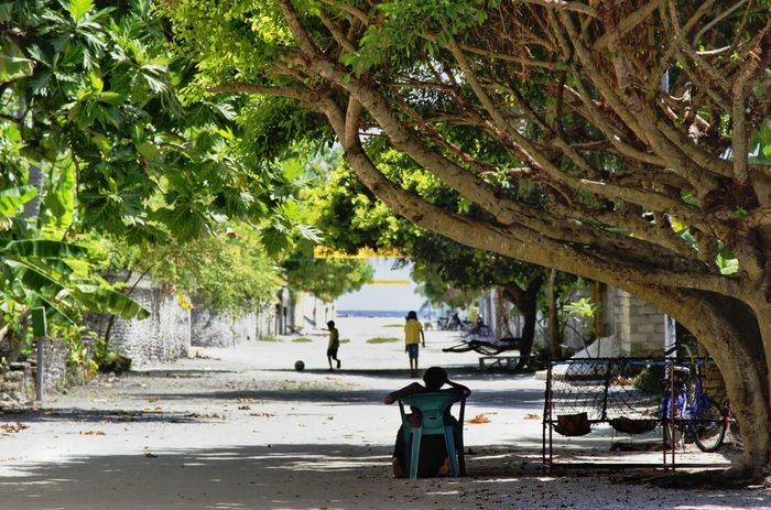 singular moment in an island Islandlife Tree Water Beach Outdoors Nature Day People Sky