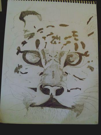 my inner Tiger Hello World