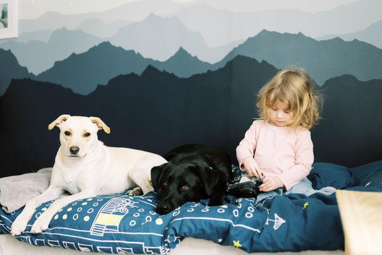 Dogs sitting on mountains against mountain range