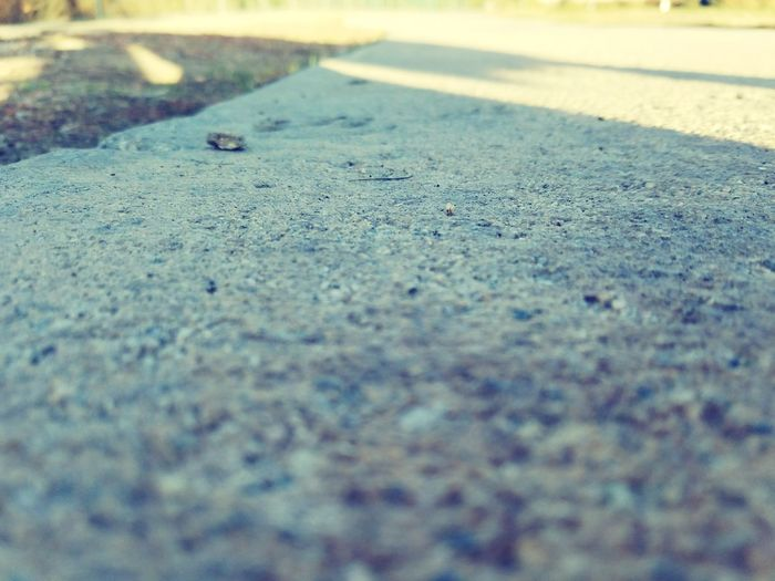 Road Surface Level Day Outdoors No People Asphalt Nature Close-up