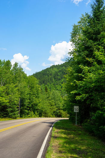 Beauty In Nature Blue Blue Sky Canada Cloud Clouds And Sky Country Road Diminishing Perspective Empty Road Green Color Growth National Park Nature Nature Non-urban Scene Quebec Road Road Marking Scenics Sky The Way Forward Tranquil Scene Tranquility Tree Vanishing Point