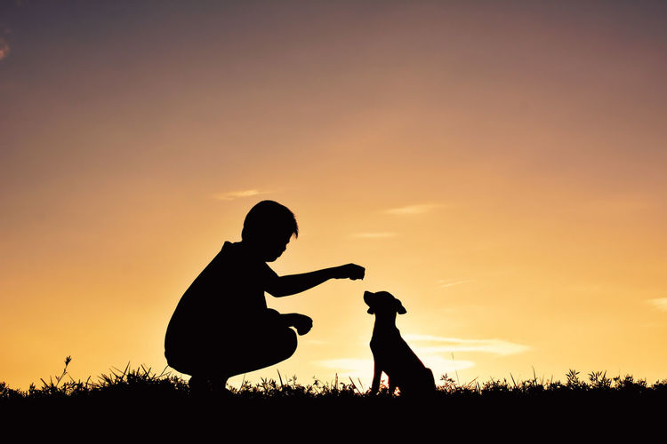 Silhouette Boy Playing With Dog Against Sky During Sunset
