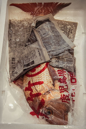 Japanese Food Tokyo Close-up Day Fish FishMarket Food Freshcatch Indoors  Newspaper No People Paper Wrapped