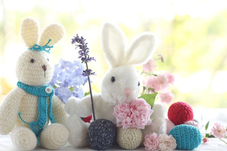 Eastet background. Easter Eggs Easter Rabbit Doll Rose - Flower Easter Bunny Blooming Petal Flower Head Pink Rabbit - Animal