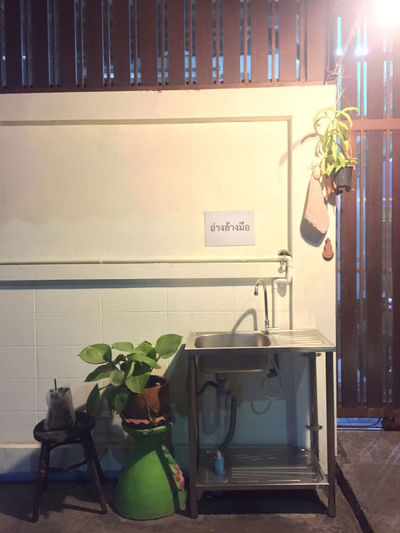 Potted plant on table against illuminated wall at home