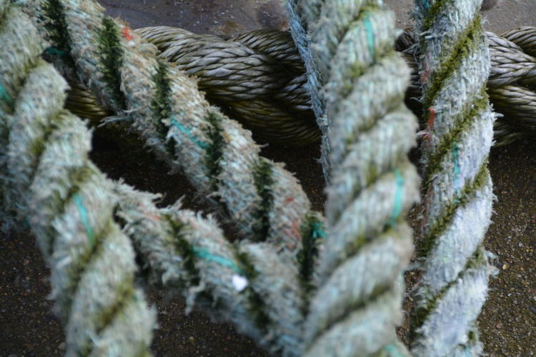 Close-up of rope on footpath
