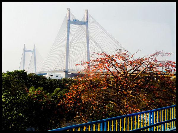Vidhyasagar Setu Kolkata Pride Nostalgia Ganga