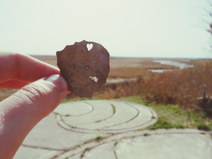 Holding Cropped Personal Perspective Focus On Foreground Close-up Human Finger Outdoors Creativity Memories In Front Of Tranquility Tranquil Scene Horizon Over Land Leaf Heart Homesick  Raw Nature Beauty Of Nature Landscape Autumn Feeling