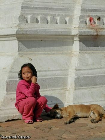 PerDiemTributeProject Dog Day Dia Del Perro Documentaryphotography Peoplephotography Kathmandu, Nepal