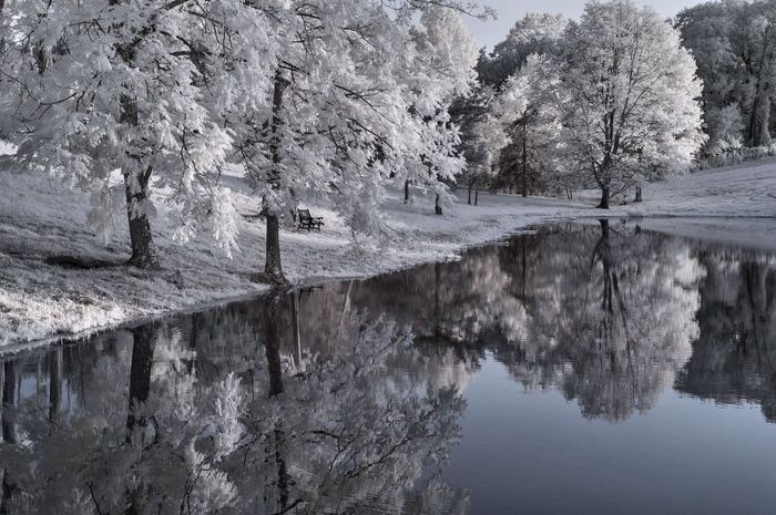 Bare Tree Beauty In Nature Day Growth Idyllic Infrared Photography Lake Mountain Nature No People Non Urban Scene Non-urban Scene Outdoors Reflection River Rock - Object Rock Formation Scenics Standing Water Tranquil Scene Tranquility Tree Tree Trunk Trees Water