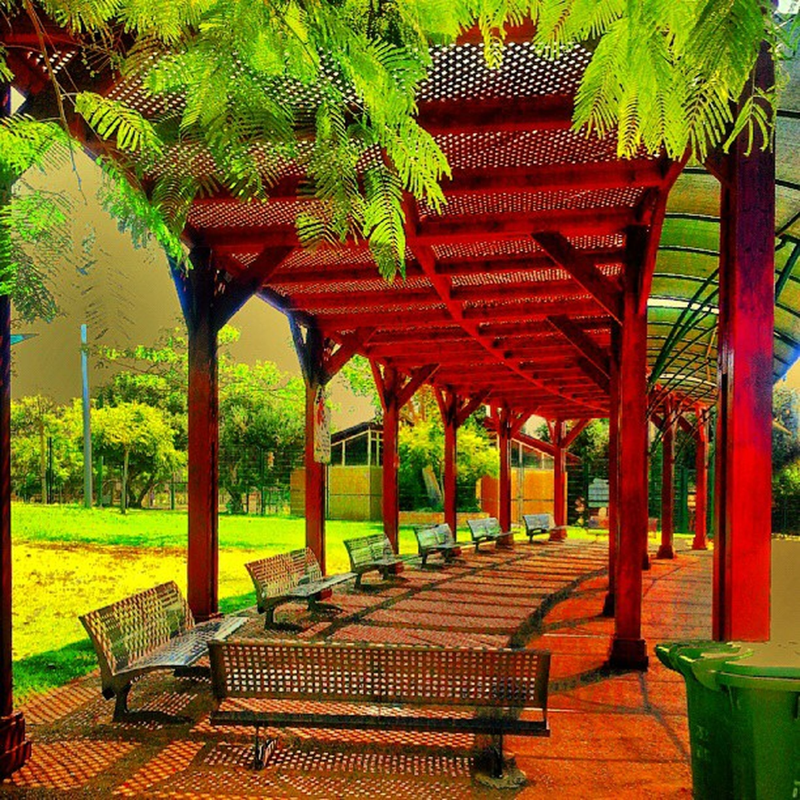 tree, chair, built structure, absence, empty, architecture, seat, bench, sunlight, gazebo, red, park - man made space, growth, in a row, table, day, nature, tranquility, outdoors, roof