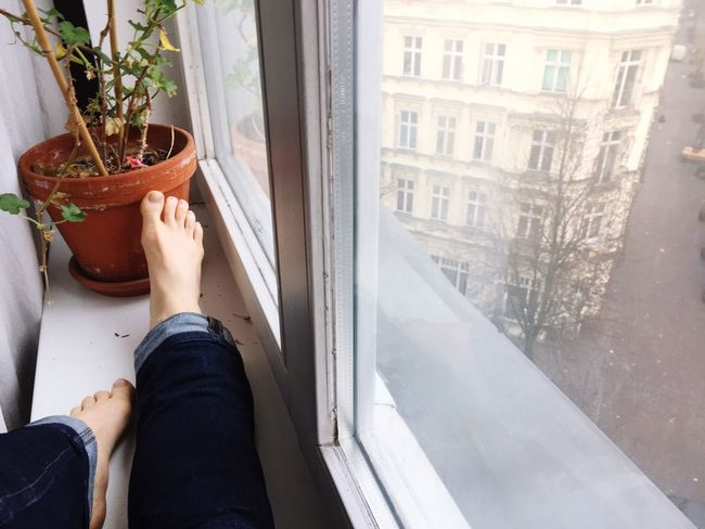 EyeEm Selects One Person Window Plant Human Body Part Lifestyles Day Real People Window Sill Nature Personal Perspective Potted Plant Body Part Human Leg Architecture Women Adult