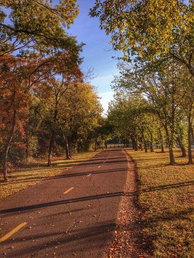 Good morning! I'm off work until Nov 3rd. Tadaa Community Tadaa Friends Eye Em Around The World Trees
