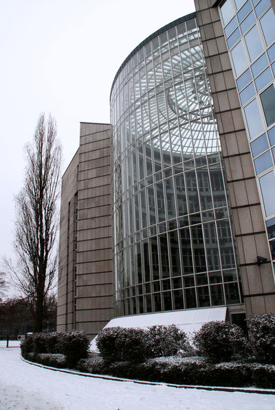 Architecture Bare Tree Big Windows Building Exterior Built Structure City Clear Sky Cold Temperature Day Glass Glass Fronted Building Low Angle View Modern Nature No People Outdoors Sky Skyscraper Snow Tree Weather Winter Wintergarden