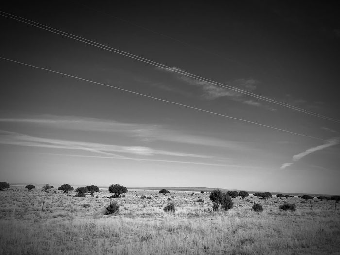 """High Wire Act"" Power lines dance above the open grassland plains and scattered Junipers of Central New Mexico. New Mexico Skies New Mexico Photography New Mexico Clouds And Sky Juniper Grassland Black And White Photography Black And White Landscape Nature Field Vapor Trail Scenics Tranquility Beauty In Nature"