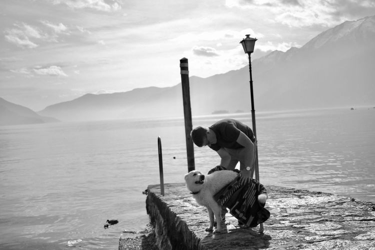 Man wiping dog with towel on pier over lake against mountains
