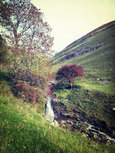 Lovely walk Colors Of Autumn Beautiful North Yorkshire Walking Around Hanging Out