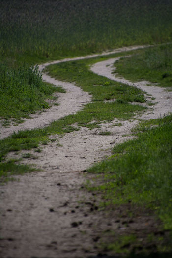 Plant Footpath Direction Grass No People The Way Forward Road Transportation Nature Land Day Selective Focus Tranquility Field Green Color Outdoors Growth Landscape Tranquil Scene Dirt Road Surface Level Trail Long