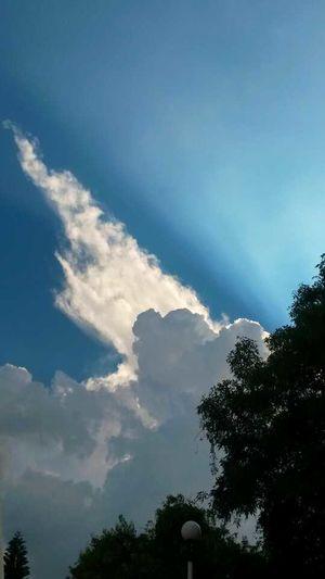 Un muy buen cielo